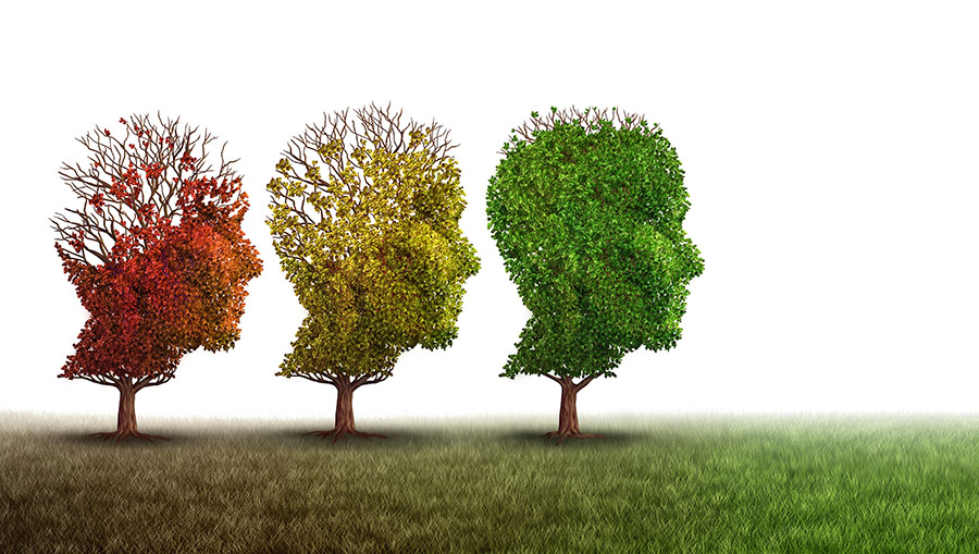 Biotech Offers Reason for Others' Failed Trials of Potential Alzheimer's Disease Treatments